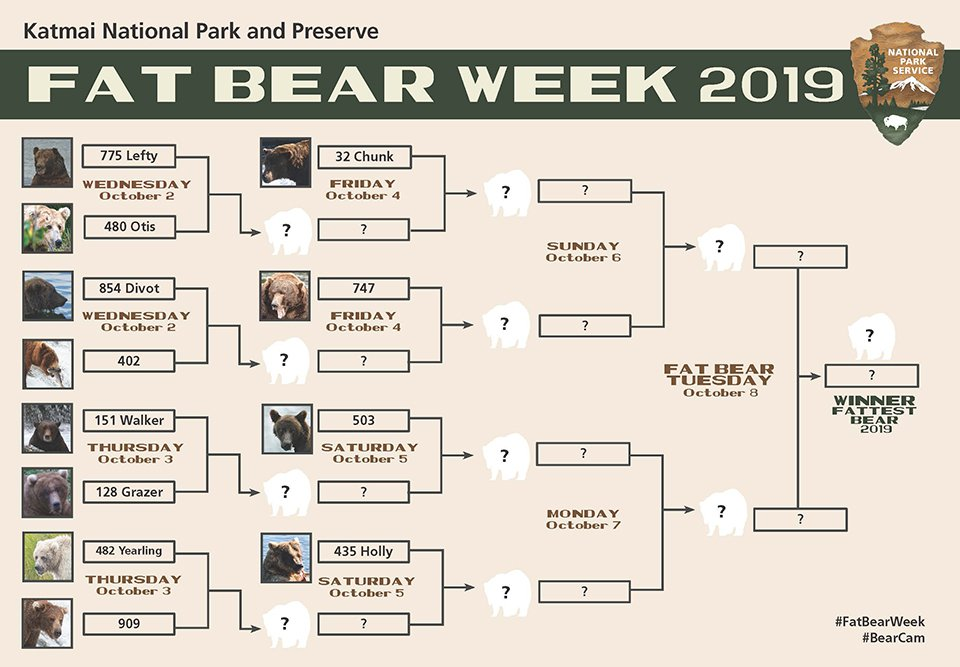 2019-Fat-Bear-Bracket-6-960px.jpg