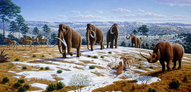 Ice_age_fauna_of_northern_Spain_-_Mauricio_Antón.jpg
