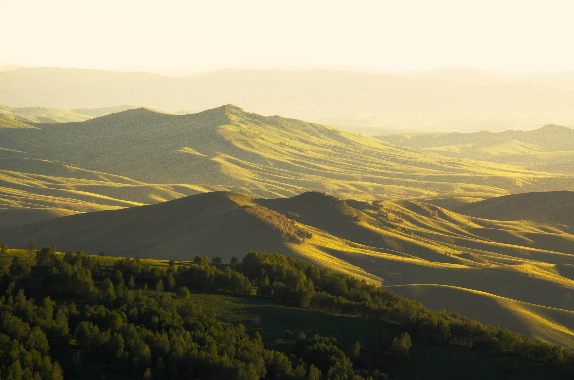 /upload/iblock/42f/42ff826974cda26275e361e3b8de5973.jpg