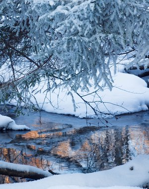 /upload/iblock/369/36926d956ff638ae8b99fe2930f41751.jpg