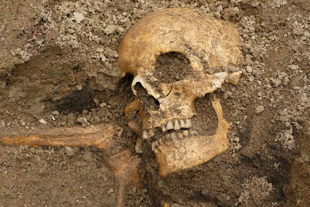 the-remains-of-a-man-was-discovered-in-one-of-the-boat-burials-1024x683.jpg