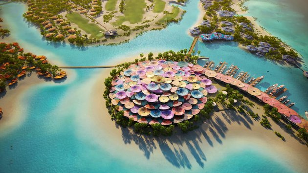 Aerial View of Coral Bloom Concept.jpg